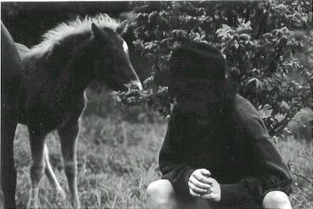 1990 - App Trail, Roan Mtn. Foal and me